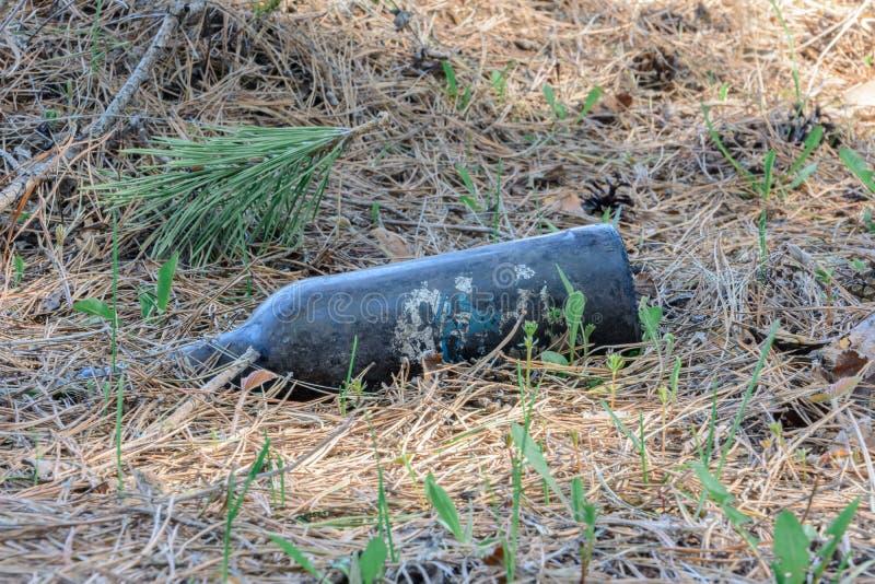 Inquinamento ambientale La gente ha lasciato i detriti in fauna selvatica Discarica sull'erba vicino al parco della natura e dell immagine stock