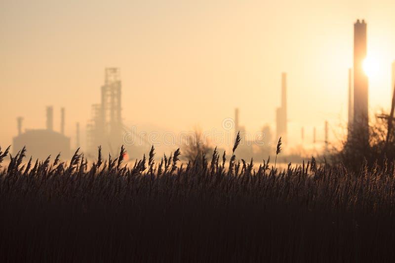 Inquinamento 7 di mattina fotografie stock libere da diritti