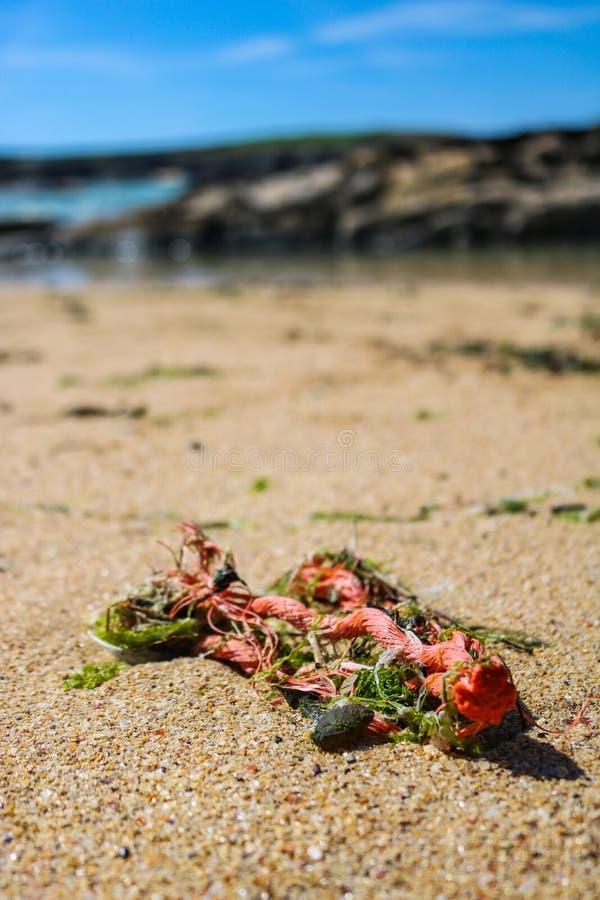 Inquinamento di plastica dal mare immagine stock libera da diritti