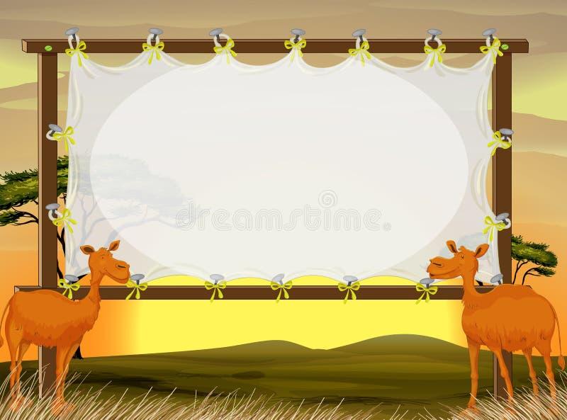 Inrama designen med två kamel i fältet vektor illustrationer
