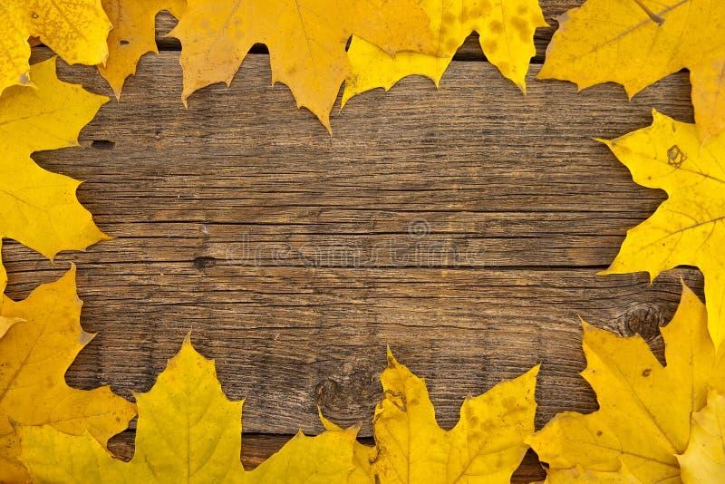 Inrama samlat av färgrika höstsidor på trälantlig backgr royaltyfri fotografi