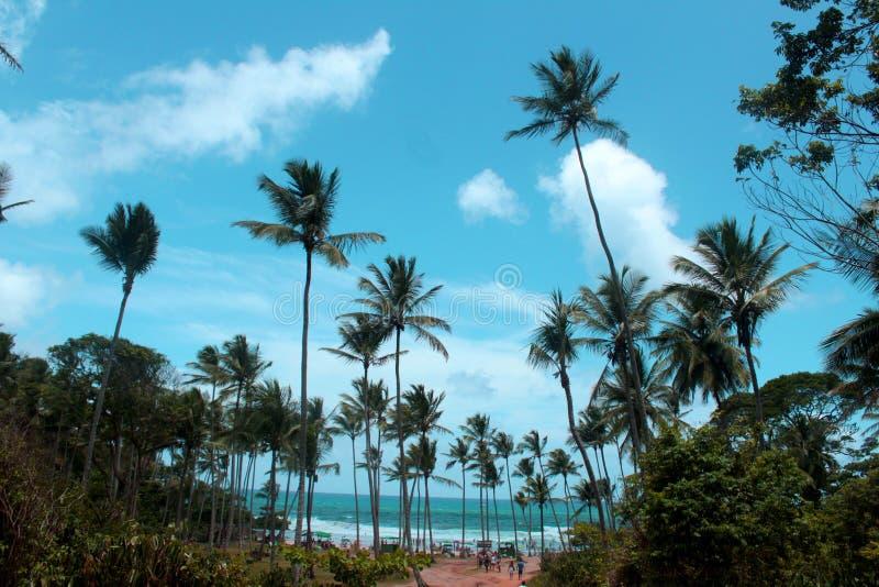 Inre av Bahia - Itacaré arkivbild