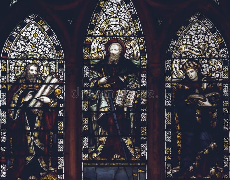 Inre av den Lichfield domkyrkan - slut för målat glassskeppG upp royaltyfria foton