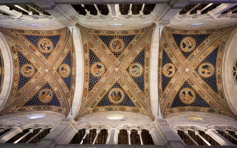 Inre av den Lucca domkyrkan arkivfoto