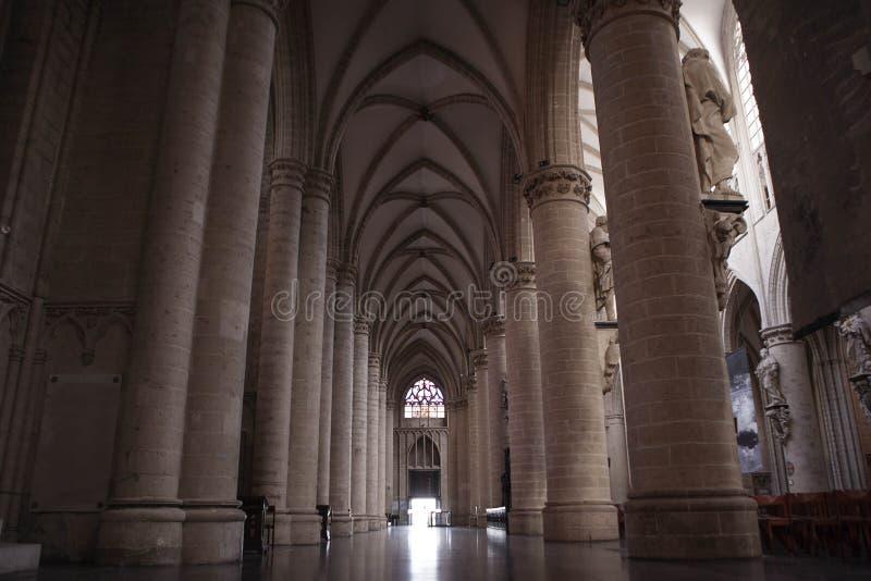 Inre av St Michael och domkyrkan för St Gudula royaltyfri fotografi
