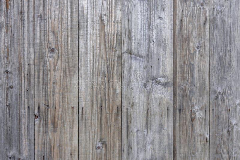 Inre bakgrund för träför timmertextur naturligt ädelträ för panel arkivbild