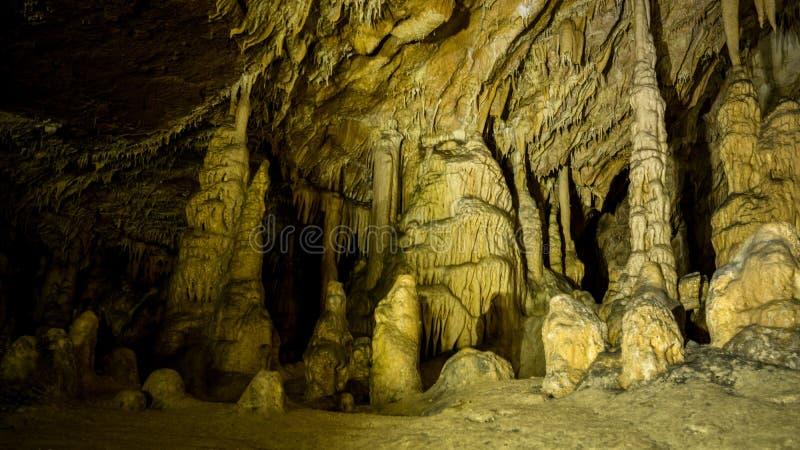 Inre detaljer av den Vartop glaciärgrottan, Apuseni berg, Rumänien arkivbild