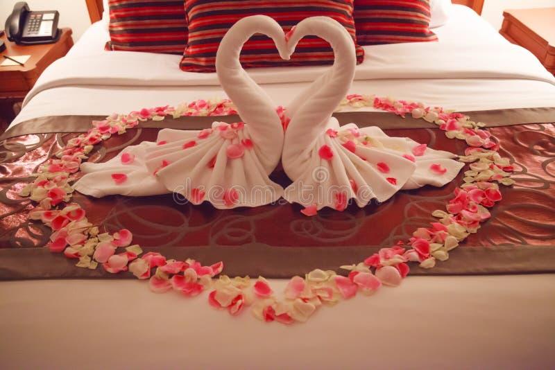 Inre kyssande svanorigamihanddukar för romantiskt sovrum och strilad ny rosa vit Rose Flower Petals garnering på säng för royaltyfri bild