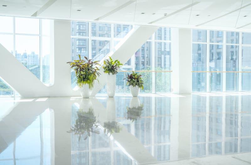 Inre sikt som ut ser in mot för att tömma kontorslobby- och ingångsdörrar och den glass gardinväggen med ramen arkivbilder