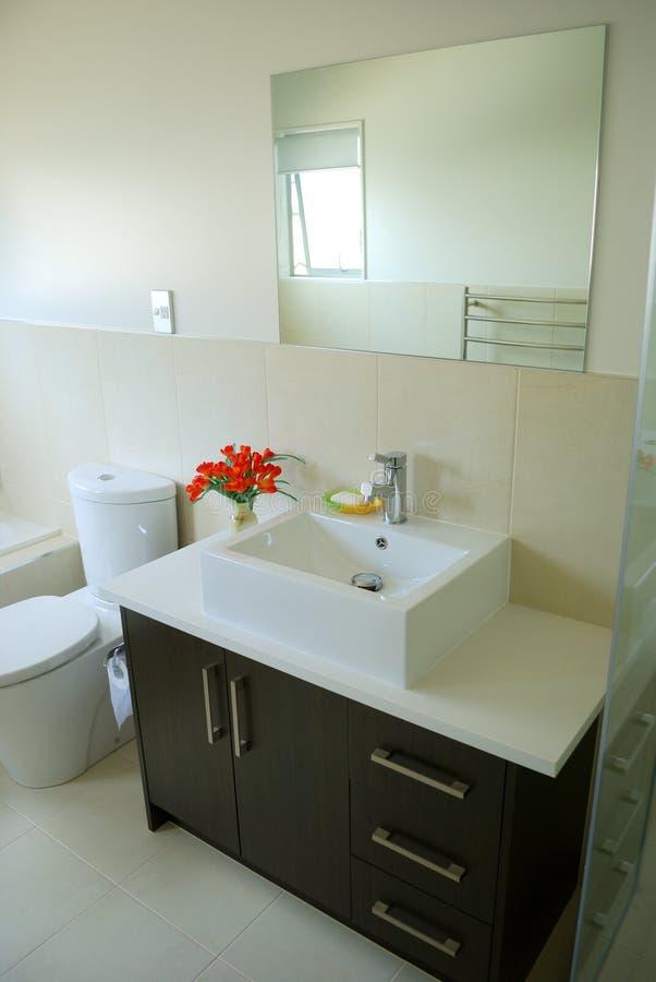 inre stilfullt för badrum royaltyfri foto