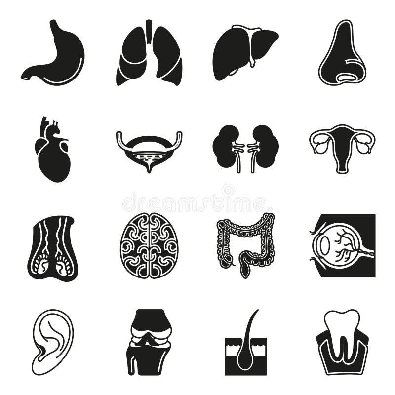 Inre symbolsuppsättning för mänskliga organ stock illustrationer