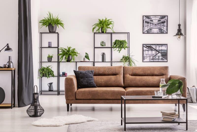 Inredesign som skapas av växtvännen, den olika sorten av plowers och växten på en svart metallhylla bak den stora lädersoffan royaltyfria bilder