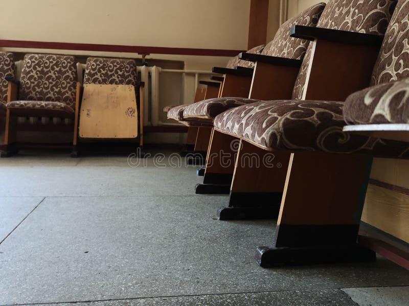 Inredningsdesign för boende eller mottagning med grå mattor, pansar, växthus, skåp på golvbakgrunden av trä royaltyfri bild