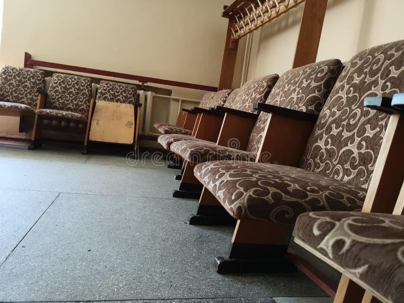 Inredningsdesign för boende eller mottagning med grå mattor, pansar, växthus, skåp på golvbakgrunden av trä royaltyfria foton