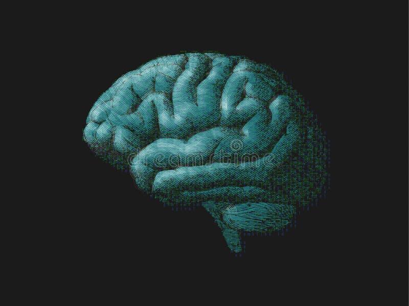 Inrista den gröna hjärnan kombinera med digital text på mörker BG stock illustrationer