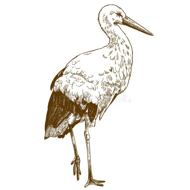 Inrista dra illustrationen av storken stock illustrationer