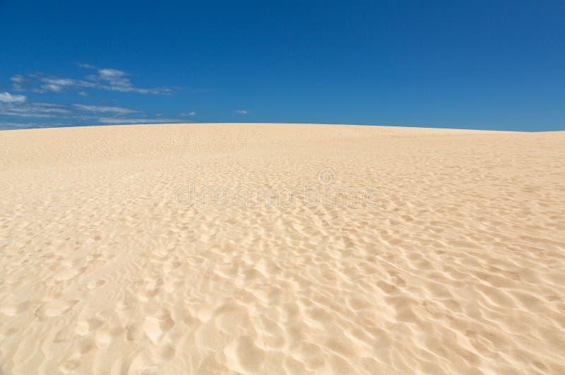 Insabbi i modelli dopo vento sulla riserva naturale, il parco naturale, Corralejo, Fuerteventura immagine stock libera da diritti