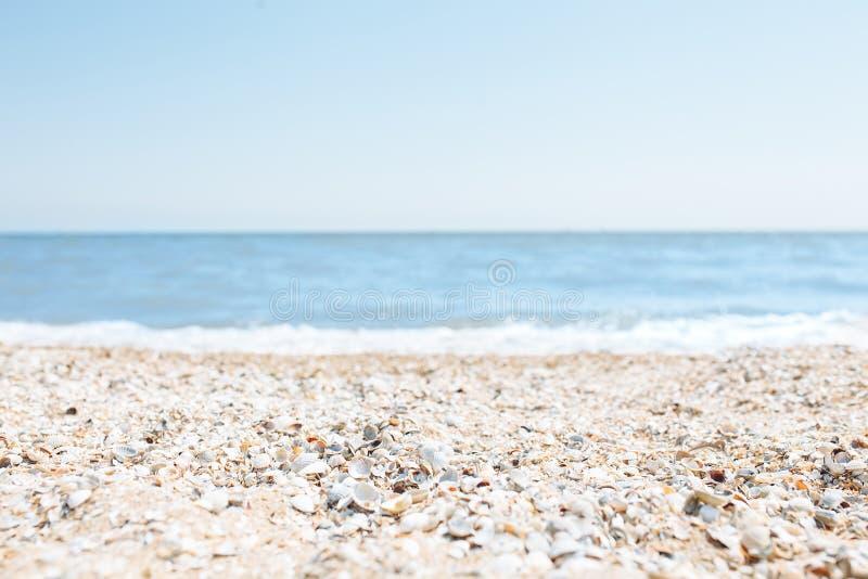 Insabbi il primo piano, contro lo sfondo di un mare o di un oceano blu vago, una spiaggia vuota, il giorno soleggiato, spiaggia c immagini stock
