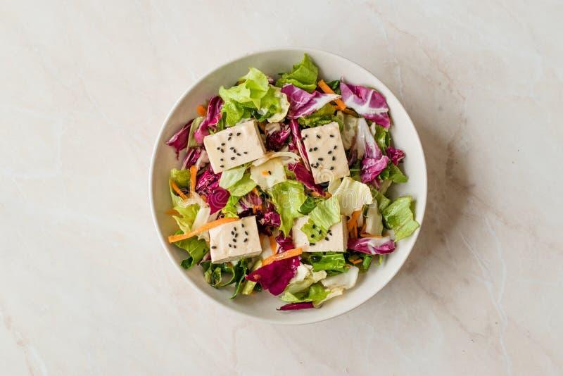 Insalata asiatica del tofu del vegano organico con le fette del cavolo rosso, della lattuga e della carota fotografia stock