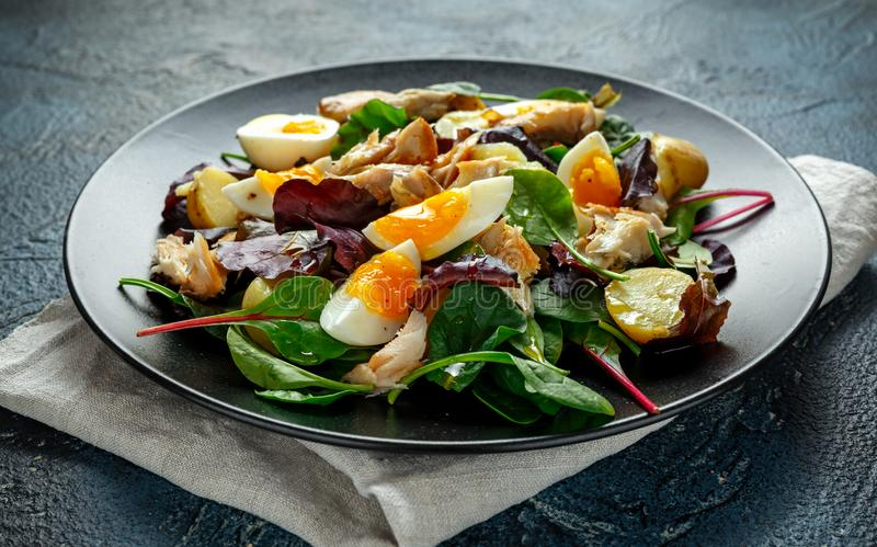 Insalata calda dello sgombro affumicato con la patata novella, uova, preparato verde della lattuga in un piatto fotografie stock libere da diritti