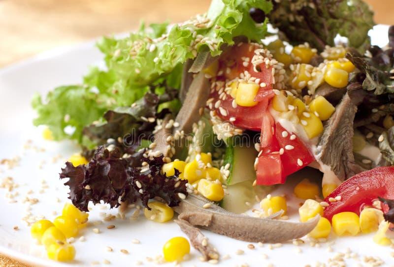 Insalata con le verdure e la carne fotografie stock libere da diritti
