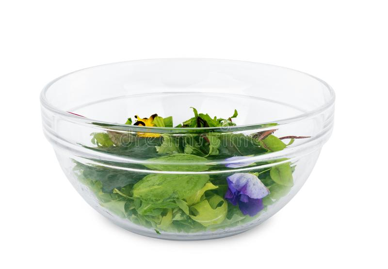 Insalata dei verdi, del formaggio e del ravanello su un fondo bianco isolato immagini stock
