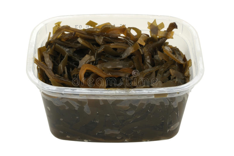Insalata del kelp in un POT di plastica fotografie stock