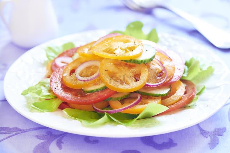 Insalata del pomodoro con la cipolla ed il cetriolo fotografia stock