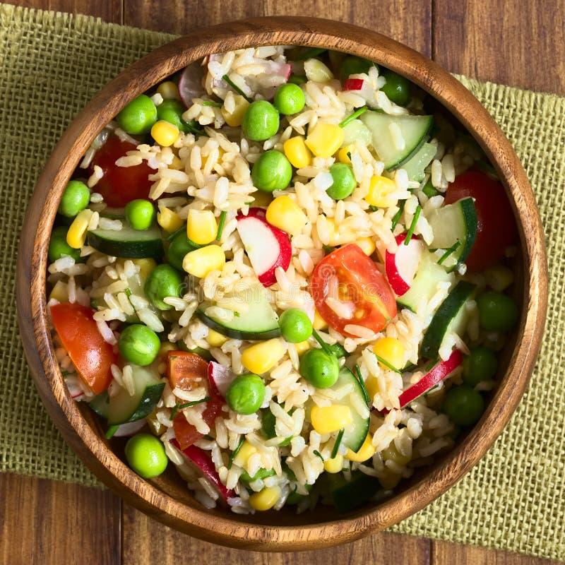 Insalata della verdura e del riso sbramato immagini stock libere da diritti