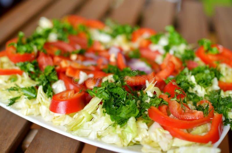 Insalata della verdura fresca con cavolo e la carota fotografia stock libera da diritti