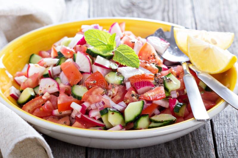 Insalata della verdura fresca con il condimento della senape immagini stock libere da diritti