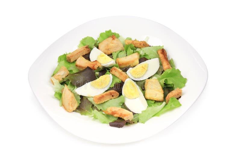 Insalata di Caesar con le uova fotografia stock libera da diritti