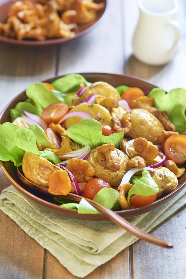 Insalata di patata con i galletti, i pomodori e le cipolle fotografie stock