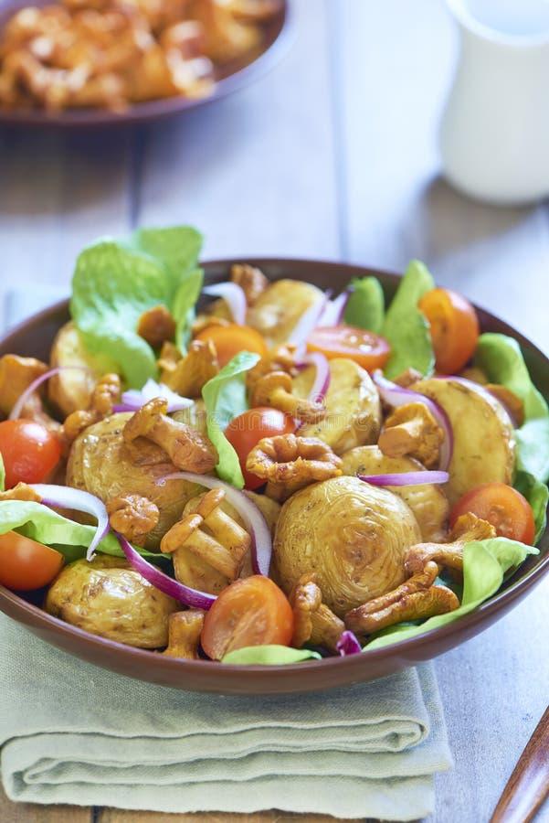 Insalata di patata con i galletti, i pomodori e le cipolle fotografia stock