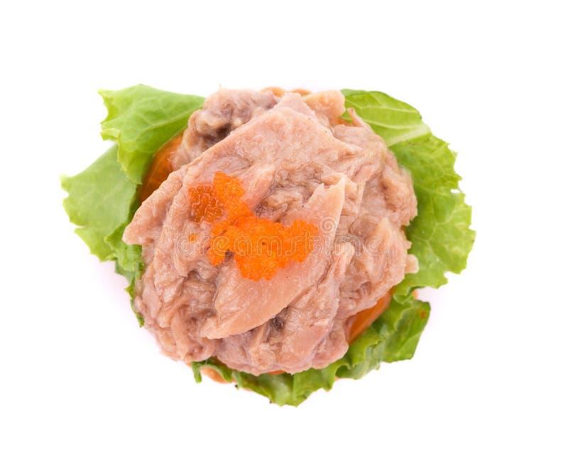 insalata di tonno con il cracker su fondo bianco fotografie stock libere da diritti
