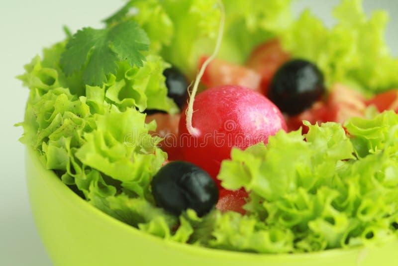 Insalata di verdure con il ravanello rosso fotografia stock