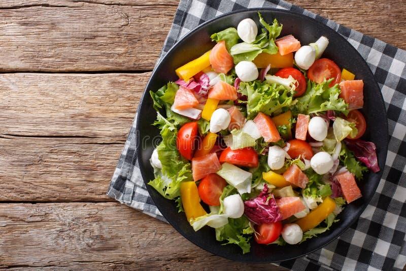 Insalata fresca con il salmone, il formaggio della mozzarella e le verdure salati immagini stock