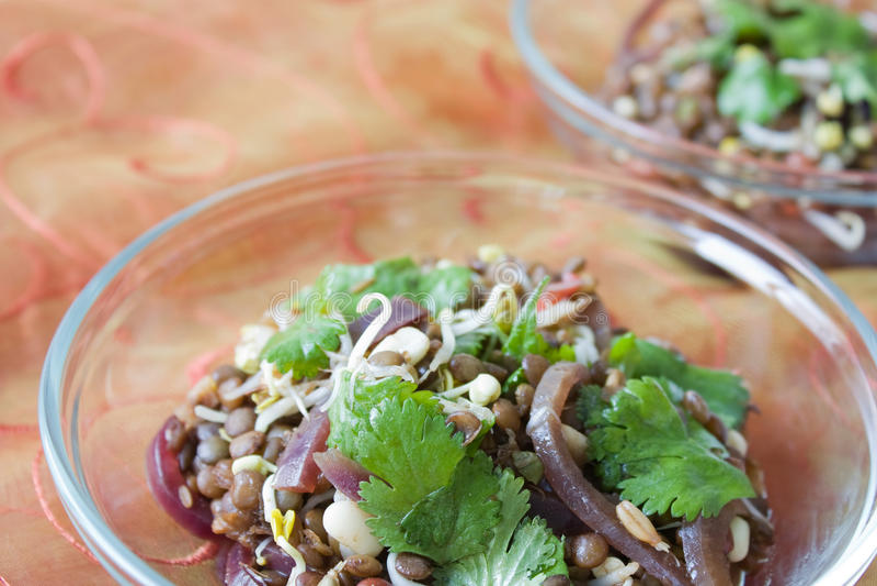 Insalata indiana della lenticchia immagine stock