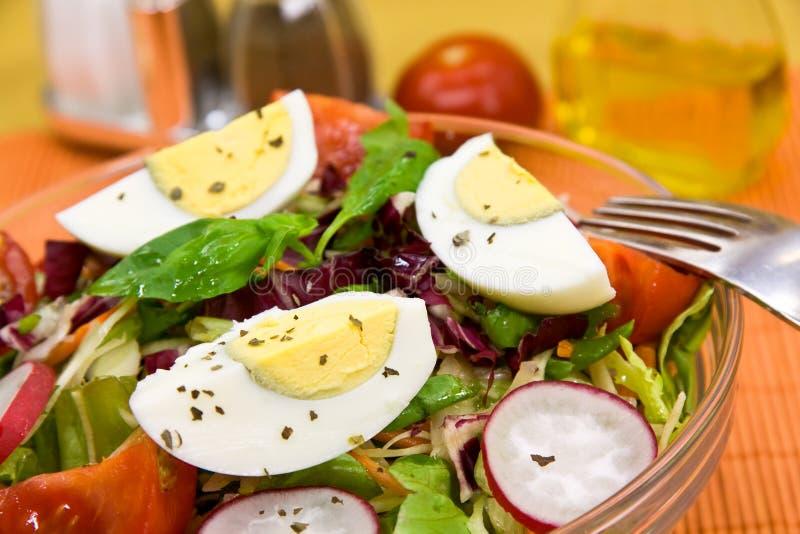 Insalata mixed fresca con il cetriolo, ravanello immagine stock
