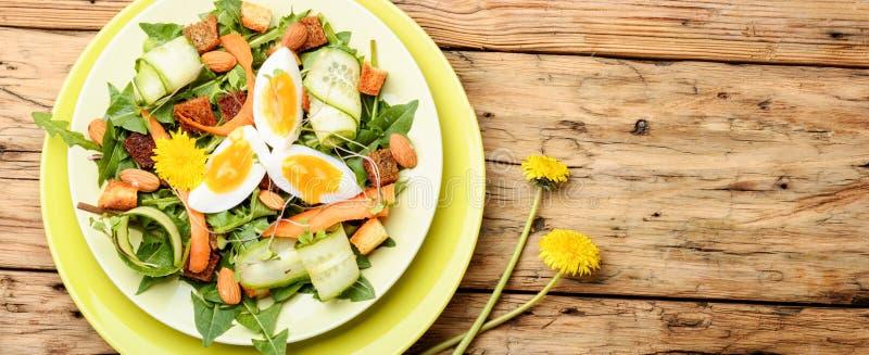 Insalata naturale di dieta Insalata del vegano immagini stock libere da diritti