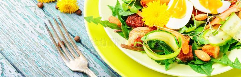 Insalata naturale di dieta Insalata del vegano fotografia stock libera da diritti