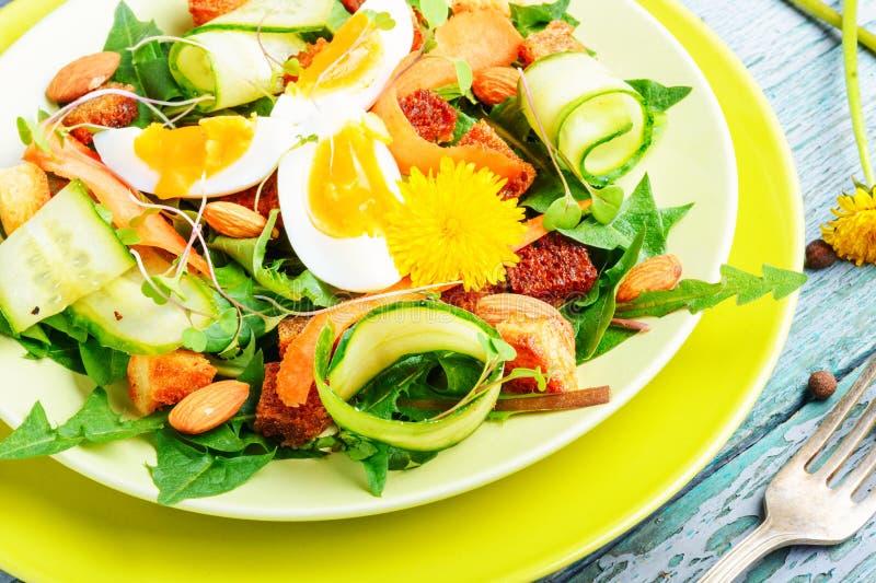 Insalata naturale di dieta Insalata del vegano fotografia stock