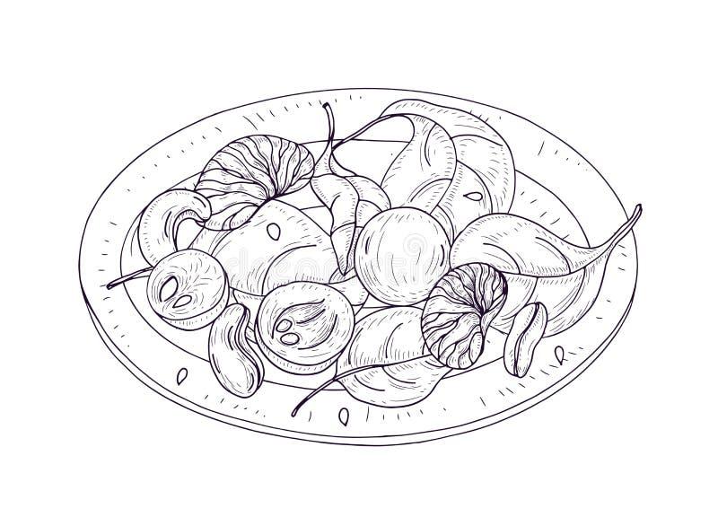 Insalata saporita sul piatto disegnato a mano con le linee di contorno su fondo bianco Pasto delizioso della verdura del ristoran royalty illustrazione gratis