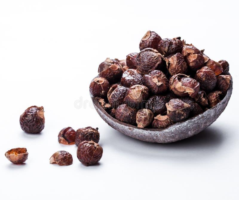 Insaponi i dadi su un fondo bianco nella noce di cocco Prodotti di cura Naturale, organico fotografie stock