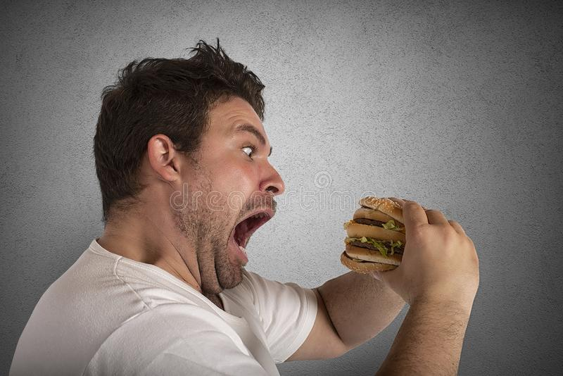 Insatiable and hungry man eating a sandwich royalty free stock photography