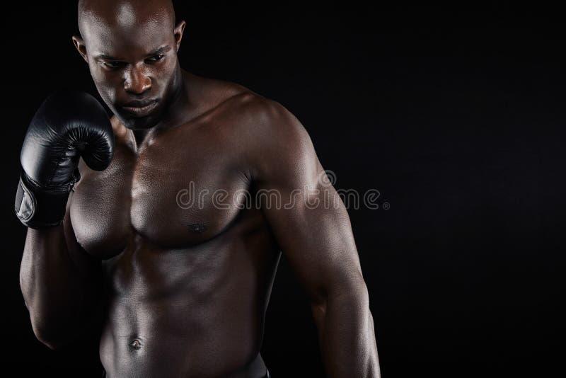 Inscatolamento di pratica del giovane pugile maschio sicuro immagine stock