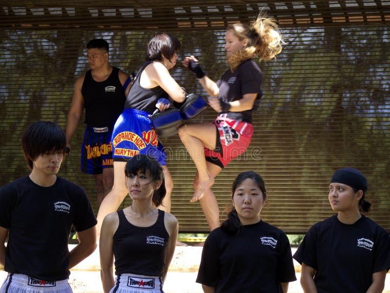 Inscatolamento di scossa tailandese fotografie stock libere da diritti