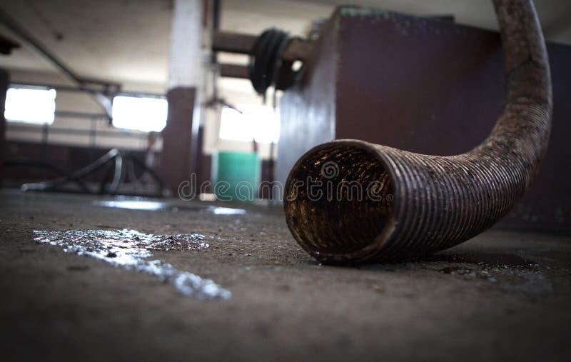 Inscenizowanie śliwki brandy zdjęcie stock