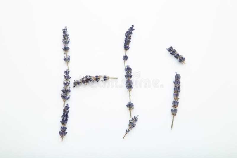 Inschrijving hallo door bloemen stock foto