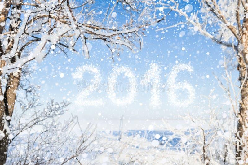 Inschrijving van het nieuwe jaar 2016 met de winter bosachtergrond royalty-vrije stock foto
